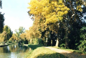The canal at Boé