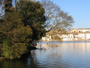 Castelnaudary from the Grand Bassin