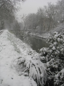 The canal under the snow